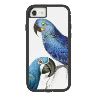 Hyacinth Macaw Parrot Birds iPhone 7 8 Case