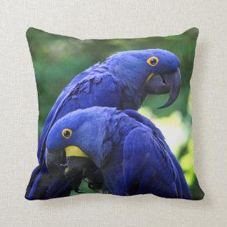 Hyacinth Macaws Throw Pillow