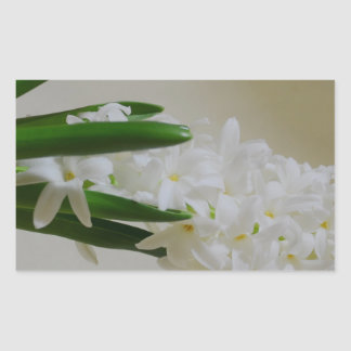 Hyacinth Rectangular Sticker