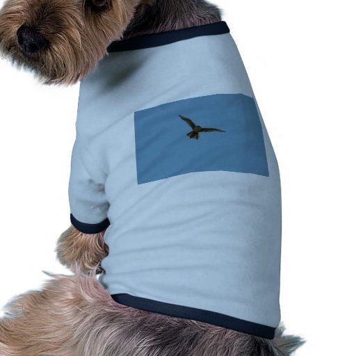 hybrid falcon dog clothing