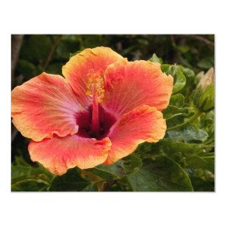 Hybrid Hibiscus 11 Cm X 14 Cm Invitation Card