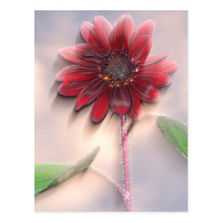 Hybrid sunflower blowing in the wind postcard