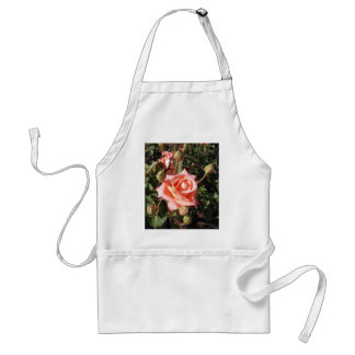 Hybrid Tea Rose Aprons
