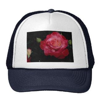 Hybrid Tea Rose 'Brigadoon' Roses Trucker Hats