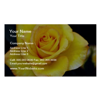Hybrid Tea Rose  flowers Business Cards
