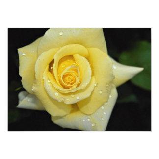 Hybrid Tea Rose 'Helmut Schmidt' Roses 13 Cm X 18 Cm Invitation Card