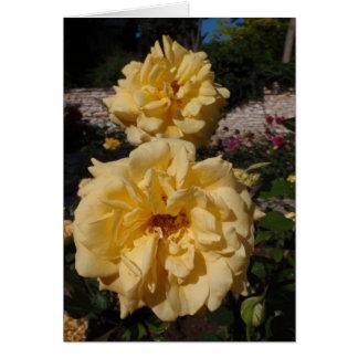 Hybrid Tea Rose Landora Card
