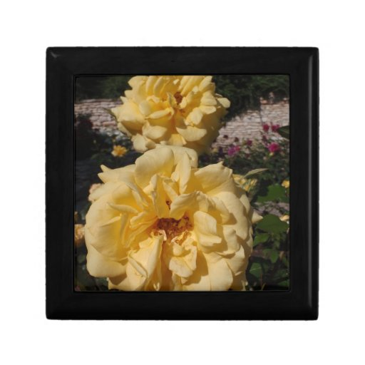 Hybrid Tea Rose Landora Jewelry Box