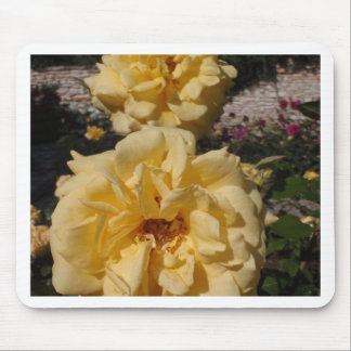 Hybrid Tea Rose Landora Mouse Pad
