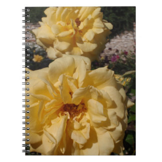 Hybrid Tea Rose Landora Note Books
