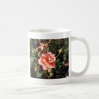 Hybrid Tea Rose Coffee Mugs