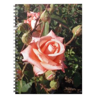 Hybrid Tea Rose Spiral Note Book