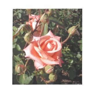 Hybrid Tea Rose Memo Notepads