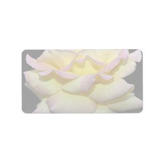 Hybrid Tea Rose 'Peace Rose' Roses Address Label