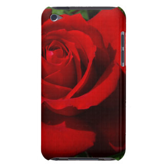 Hybrid Tea Rose Precious Platinum iPod Touch Covers