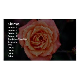 Hybrid Tea Rose Roses Business Card
