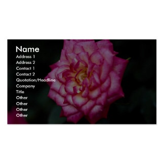 Hybrid Tea Rose Roses Business Card Templates
