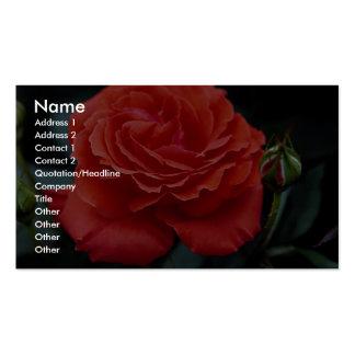 Hybrid Tea Rose Roses Business Cards