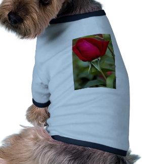 Hybrid Tea Rose Roses Dog Tee