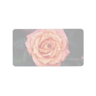 Hybrid Tea Rose Roses Address Label