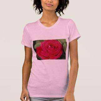 Hybrid Tea Rose Roses Shirts
