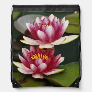 Hybrid water lilies drawstring backpack
