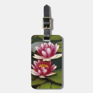 Hybrid water lilies travel bag tag
