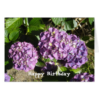 Hydrangea Birthday Greeting Card