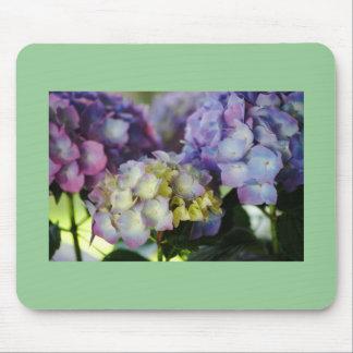 Hydrangea Blooms Mousepad