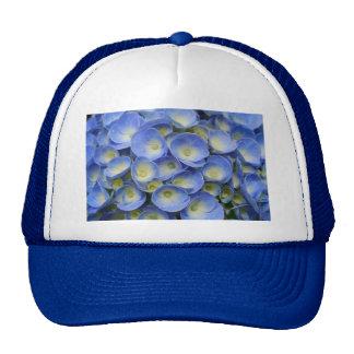 Hydrangea Cap