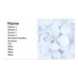 Hydrangea closeup pack of standard business cards