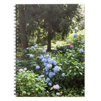 Hydrangea Floral Trees Nature Photography Notebooks