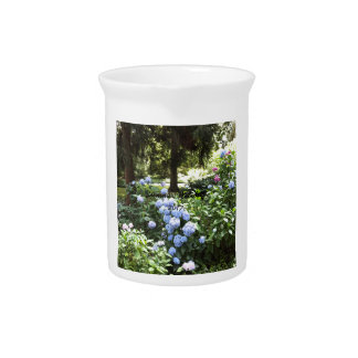Hydrangea Floral Trees Nature Photography Pitcher