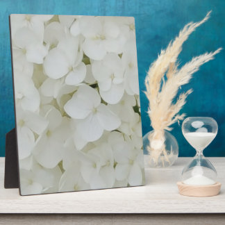 Hydrangea Flowers Floral White Elegant Blossom Plaque