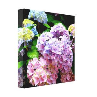Hydrangea Gardens Canvas Print