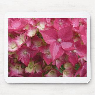 Hydrangea in pink mousepads