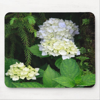 Hydrangea in the forest mouse pad