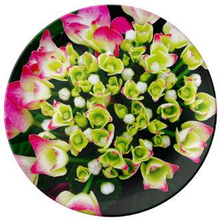Hydrangea Inspiration Plate