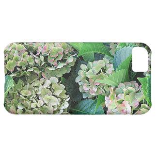 Hydrangea iPhone 5C Case (Case-Mate)