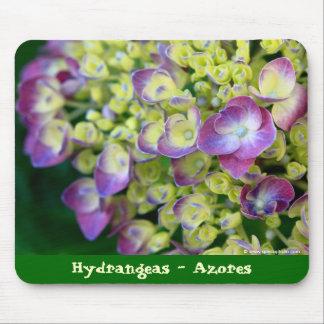 Hydrangea macro mouse pad