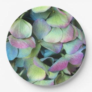 HYDRANGEA  Multi-color petals --- Paper Plate