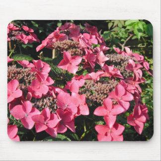 Hydrangea Pink Flowers Mousepad