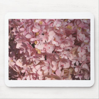 Hydrangea pink mouse pads