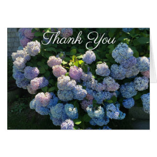 Hydrangea Thank You Notes Blank Inside