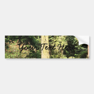 Hydrangea Wood Trees Nature Photography Bumper Sticker