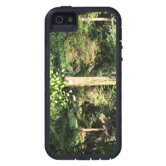 Hydrangea Wood Trees Nature Photography iPhone 5 Covers