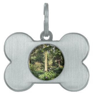 Hydrangea Wood Trees Nature Photography Pet Tag