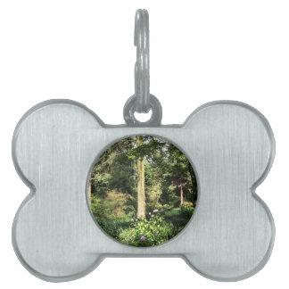 Hydrangea Wood Trees Nature Photography Pet Tag