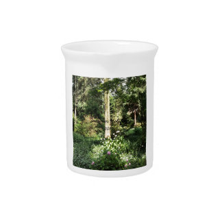 Hydrangea Wood Trees Nature Photography Pitcher