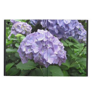 Hydrangeas at Trebah Gardens, Cornwall iPad Air Covers